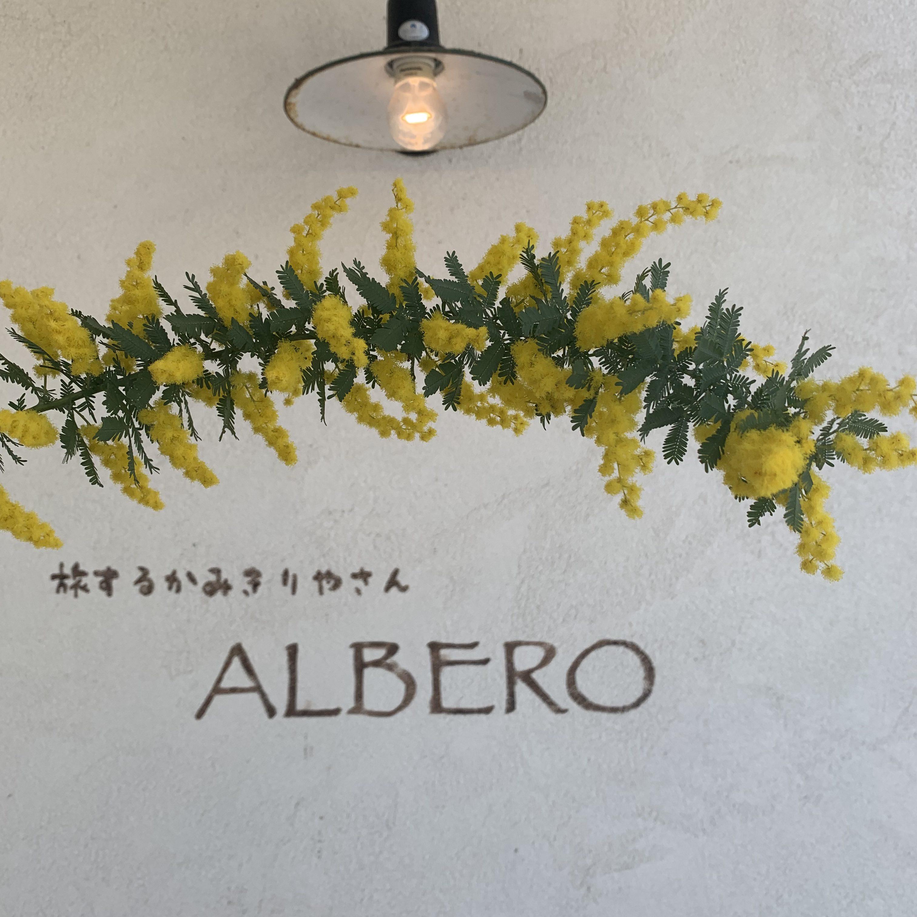 ALBEROのブログについて